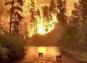 Сибирийн тайгад гарч буй гал түймрийн талаар