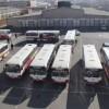 """Автобус-1, 3, """"Цахилгаан тээвэр""""-ийг татан буулгаж, нэгтгэнэ"""
